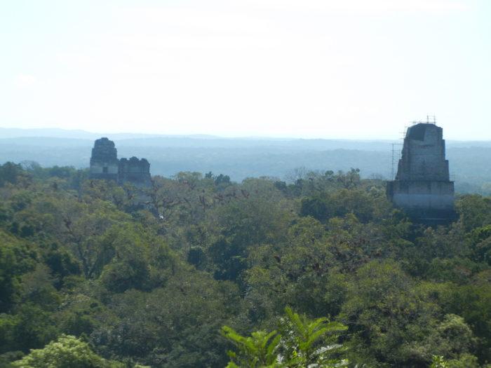 Vista a partir do Templo 4, na Guatemala
